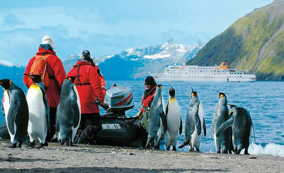 Expedition and Adventure Cruises