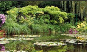 Claude Monet's garden, Giverny