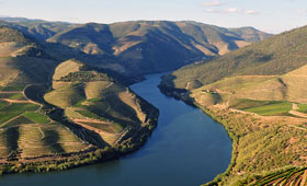 Scenery on the River Douro